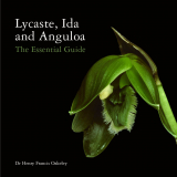 Lycaste, Ida and Anguola - The Essential Guide