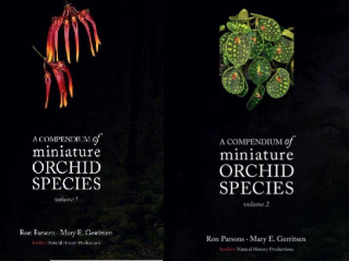 A Compendium of Miniature Orchid Species Vol. 1 + 2